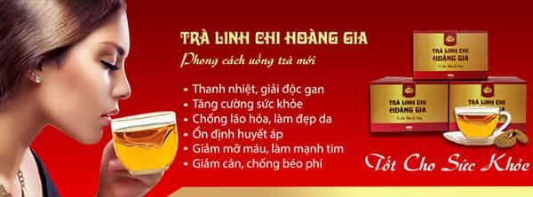 tra linh chi